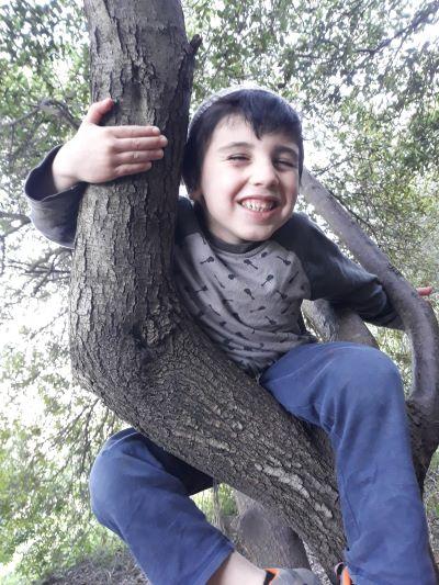 yitzy_tree_climbing_resized